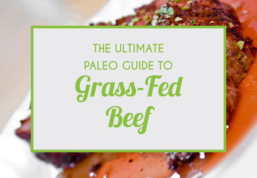 The Ultimate Paleo Guide To Artificial Grass-Fed Beeg