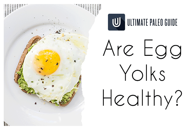 egg yolks and paleo diet cholesterol